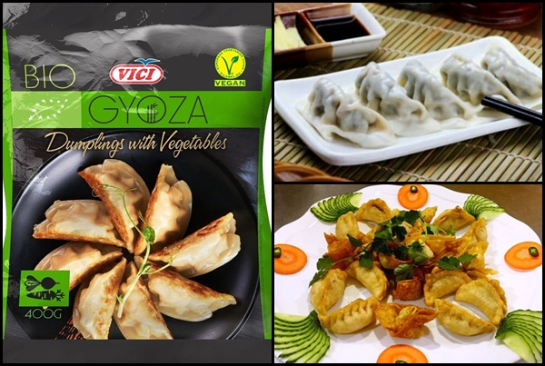 BIO VEGAN dumplings w vegetable Image